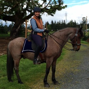 Bowdrie - Spanish Barb gelding
